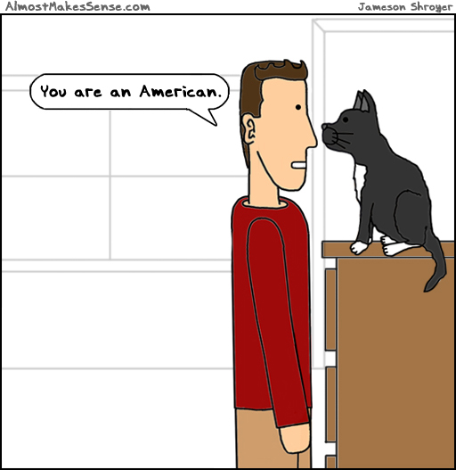 Cat American