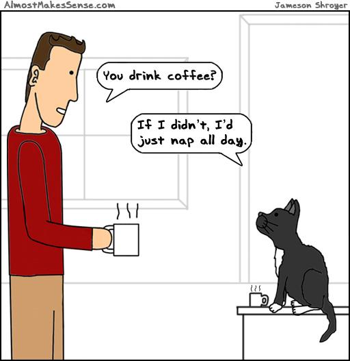 Cat Coffee Nap