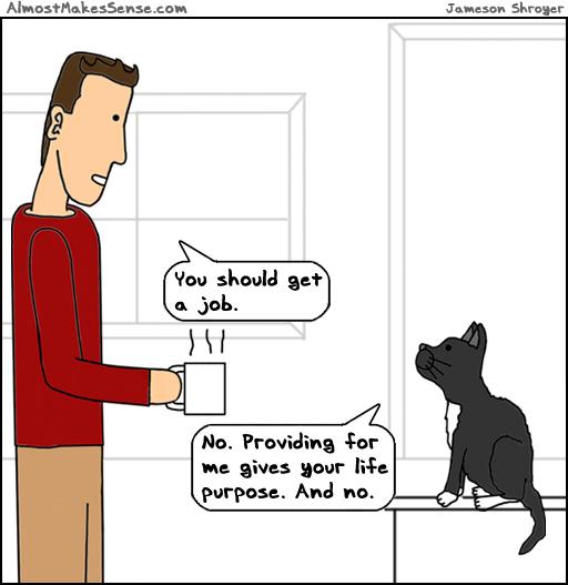 Cat Job
