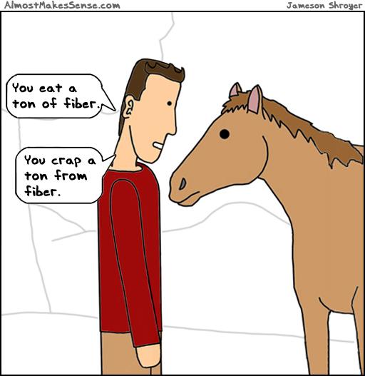 Horse Fiber
