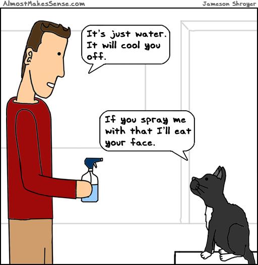 Cat water spray