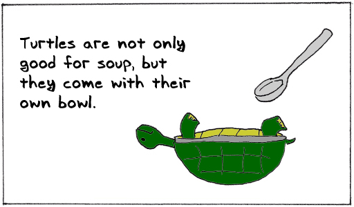 Turtlesoup
