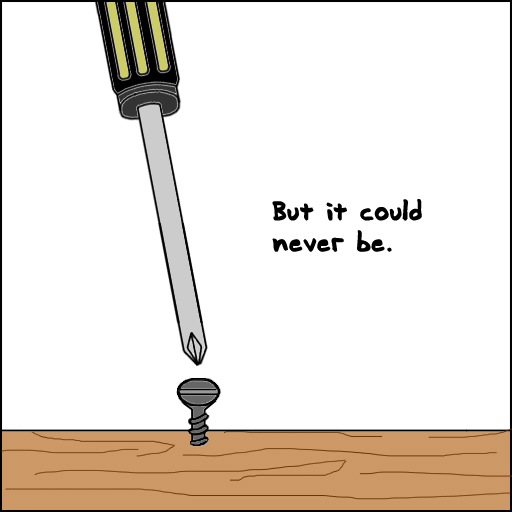 Cant Screw