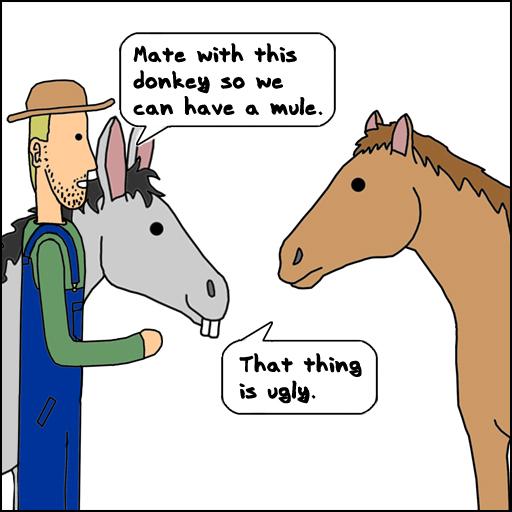 Ugly Donkey