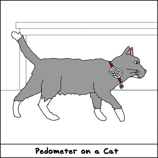 Cat Pedometer