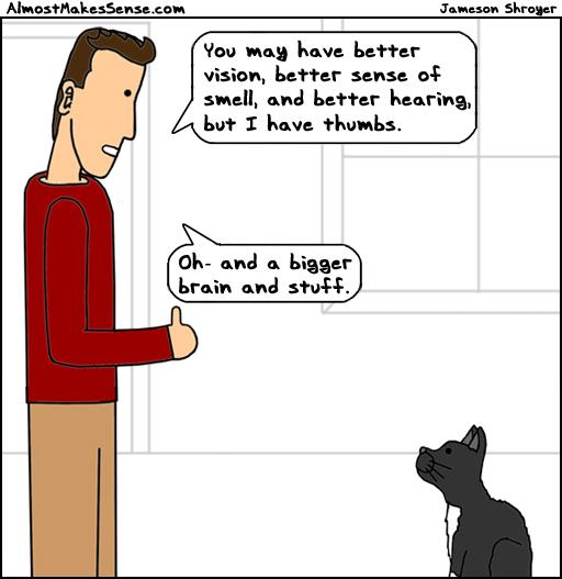 Better Than Cat