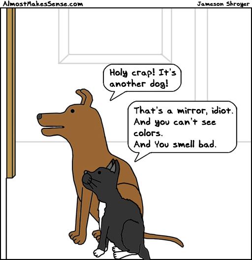 Dog Cat Mirror