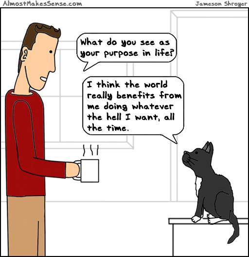 Cat Purpose