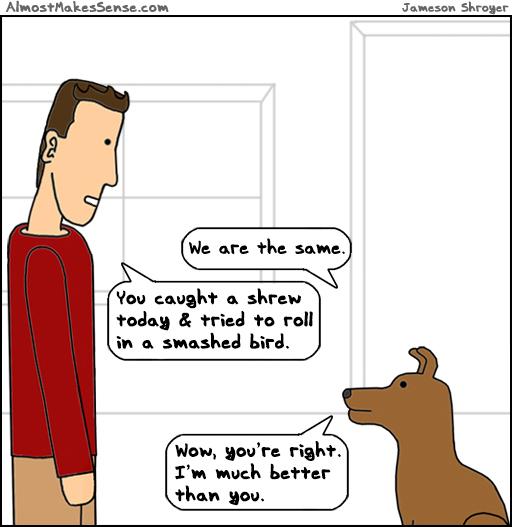 Dog Better