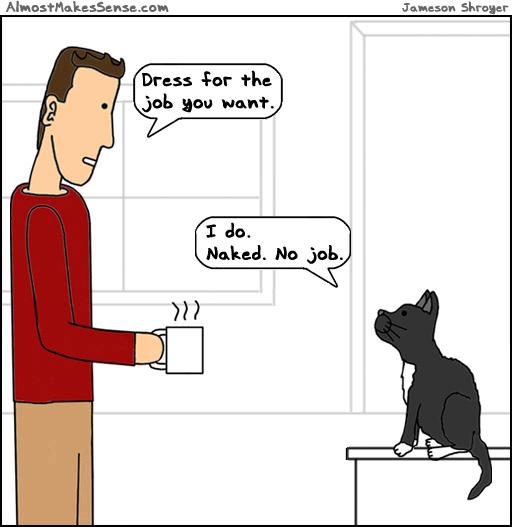 Cat Dress Job