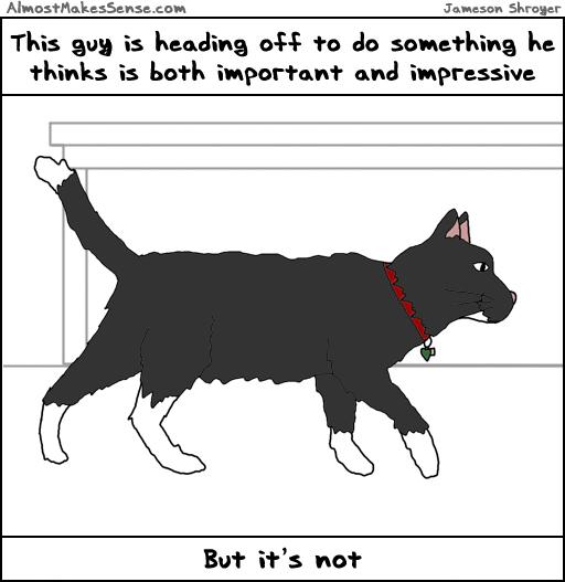 Cat Important