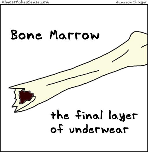 Bone Marrow Underwear