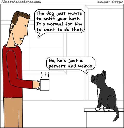 Dog Sniff Cat
