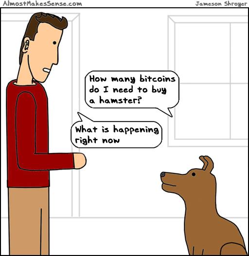 Bitcoins Hamster
