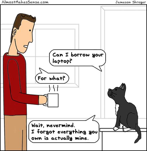 Own Cat Mine