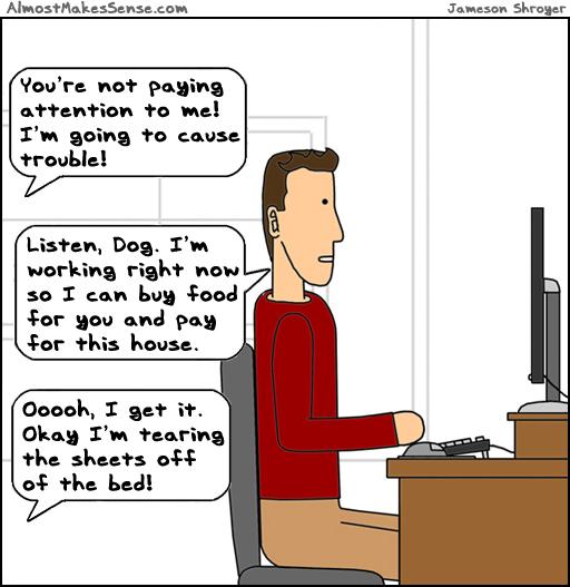 Dog Attention